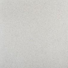 Fossil line 60x60x3 cm cornuta