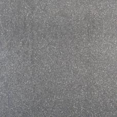 Fossil line 60x60x3 cm lingula