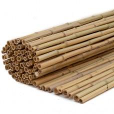 Bamboe rolscherm Dalian 35x200 cm