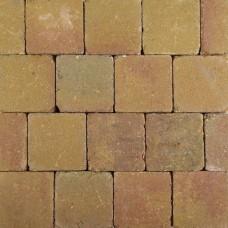 Pebblestones 15x15x6 cm lizard