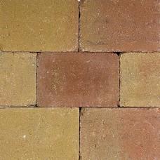 Pebblestones 15x20x6 cm lizard