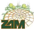ZAM Sierbestrating Tuinhout  & Hoveniers